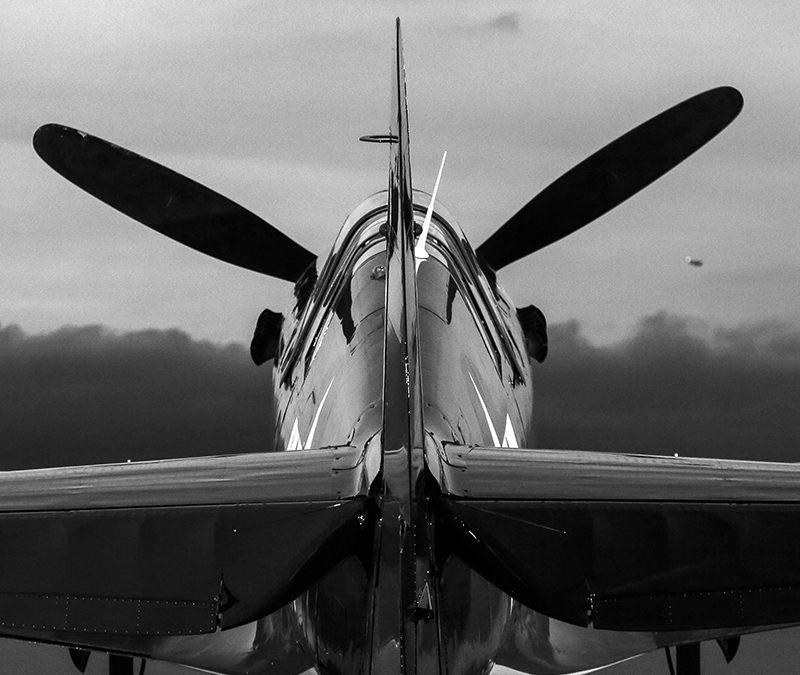 P-40!