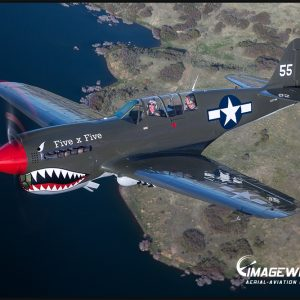 P-40 Air to Air