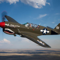 Curtiss P-40 Warhawk Air to Air