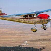Cessna 195 0011